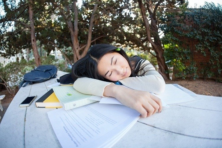 Learn Language in Sleep